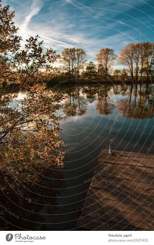 hidden spot ruhig Landschaft Wasser Himmel Herbst Baum Teich blau braun Zufriedenheit Lebensfreude achtsam Einsamkeit Horizont Idylle Natur Ferne stagnierend