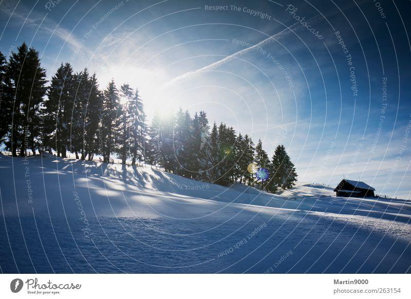 Wintersonne Natur blau Sonne Landschaft Winter Wald kalt Berge u. Gebirge Umwelt Schnee hell Horizont Feld Freizeit & Hobby frisch wandern
