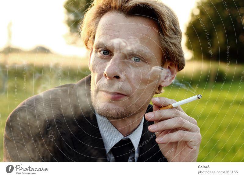 Mensch Mann grün Sommer ruhig Erwachsene Erholung Gras Garten Stil Park Zufriedenheit blond elegant Lifestyle Rauchen