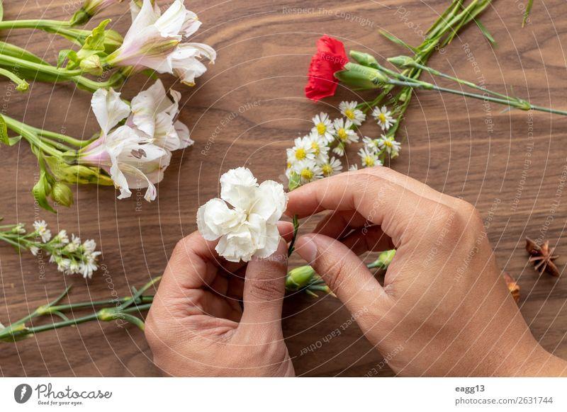 Blumen mit den Händen halten Stil schön Garten Dekoration & Verzierung Tisch Arbeit & Erwerbstätigkeit Gartenarbeit Mensch Hand Natur Pflanze Frühling Rose