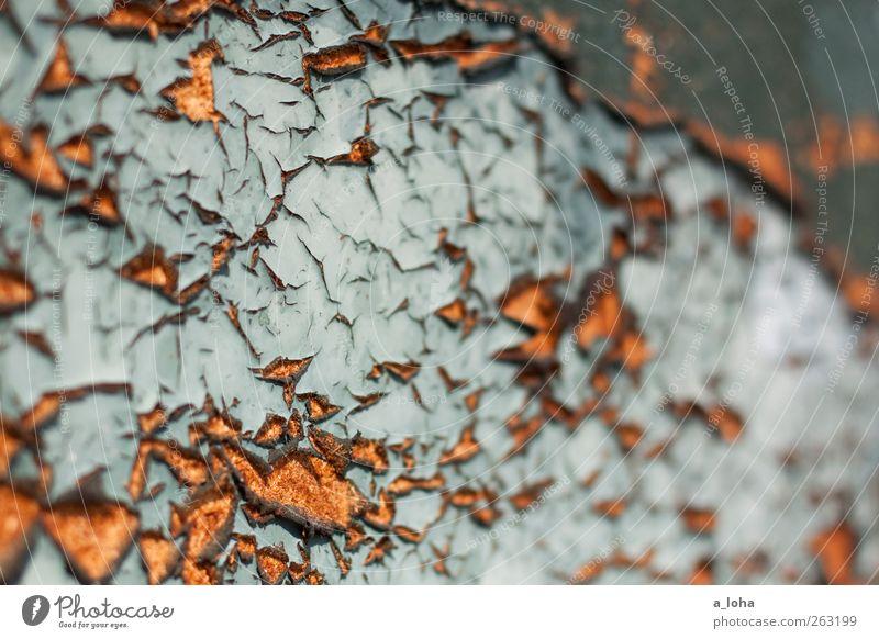 structure 1.1 Holz Linie alt kaputt trocken braun Farbe Vergänglichkeit lackiert aufbrechen türkis Zerstörung splittern Farbfoto Außenaufnahme abstrakt Muster