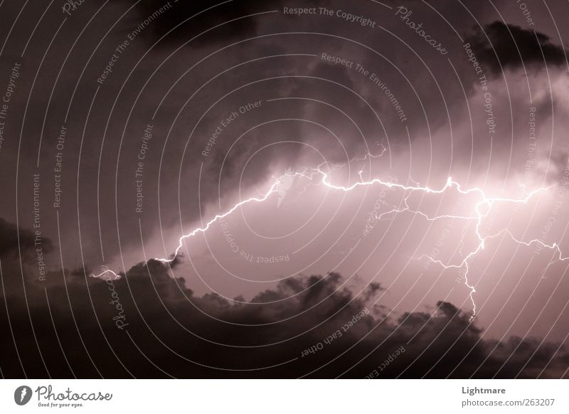 Blitze in der Nacht Natur dunkel Stimmung braun Luft Wetter Angst Kraft leuchten Energie Klima gefährlich bedrohlich beobachten Urelemente Abenteuer