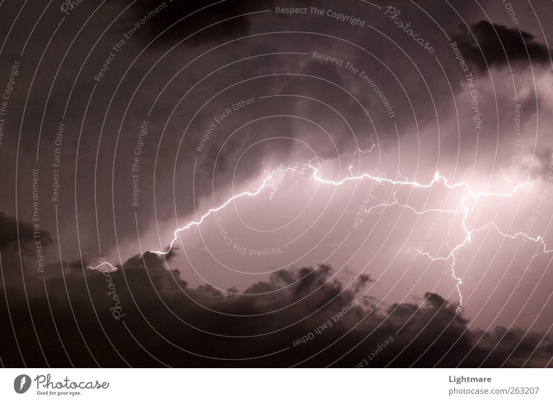 Blitze in der Nacht Natur Urelemente Feuer Luft nur Himmel Gewitterwolken Nachthimmel Klima Wetter schlechtes Wetter Unwetter beobachten leuchten Aggression