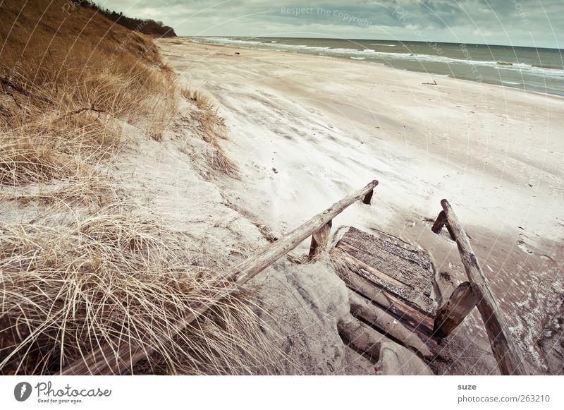 Meerluft Umwelt Natur Landschaft Pflanze Urelemente Sand Wasser Himmel Wolken Horizont Winter Klima Wetter Gras Wellen Küste Strand Ostsee Treppe Wege & Pfade