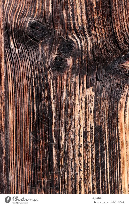 wooden Holz Linie Streifen alt dunkel fest braun schwarz verbrannt Maserung Ast trocken Farbfoto Außenaufnahme Nahaufnahme Detailaufnahme abstrakt Muster