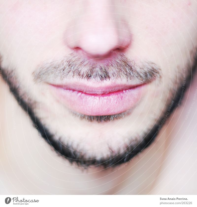 close up. maskulin Junger Mann Jugendliche Erwachsene Nase Lippen Kinn Wange 1 Mensch 18-30 Jahre Bart Oberlippenbart Dreitagebart Freundlichkeit Sympathie