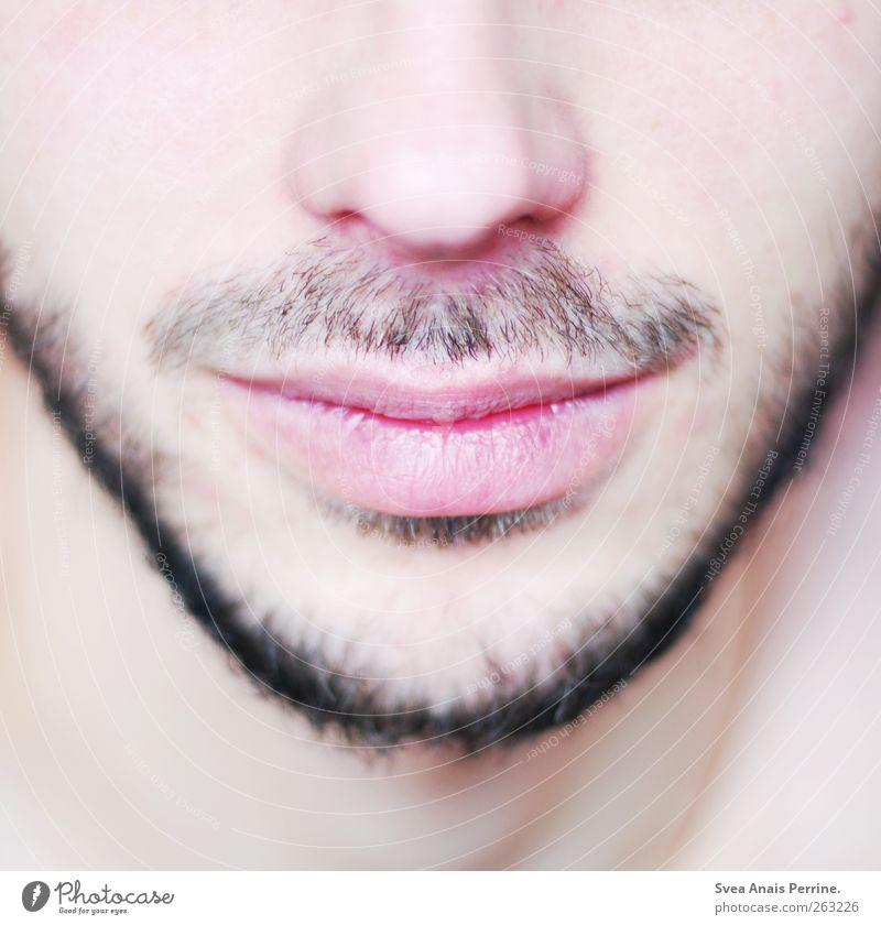 close up. Mensch Mann Jugendliche Erwachsene maskulin Nase 18-30 Jahre Lippen Freundlichkeit Junger Mann Bart Wange Sympathie Oberlippenbart Kinn Dreitagebart