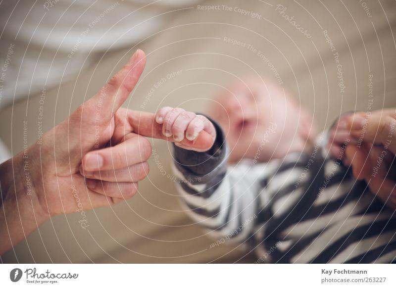 ° Mensch Hand Leben Zusammensein Zufriedenheit Baby liegen Beginn Finger schlafen Sicherheit niedlich festhalten Schutz berühren nah