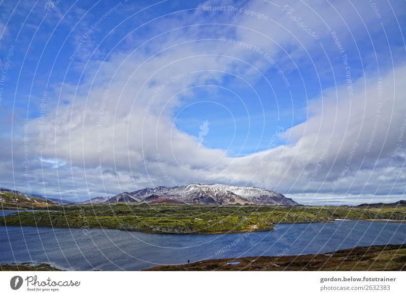 Felsen im Meer Natur Landschaft Pflanze Urelemente Erde Wasser Himmel Wolken Schönes Wetter Moos Küste Bucht Stein Erholung fantastisch Gefühle Glück