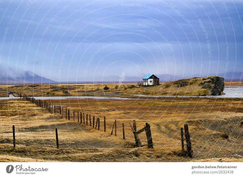 Einsamkeit am Meer Natur Landschaft Pflanze Urelemente Erde Sand Wasser Himmel Wolken Gras Moos Felsen Schneebedeckte Gipfel fantastisch Gefühle Zufriedenheit