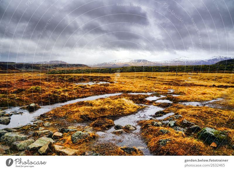 unendliche Weiten Natur Pflanze Wasser Landschaft Berge u. Gebirge Gefühle Gras außergewöhnlich Zufriedenheit Wetter Erde Kraft Abenteuer Wind beobachten