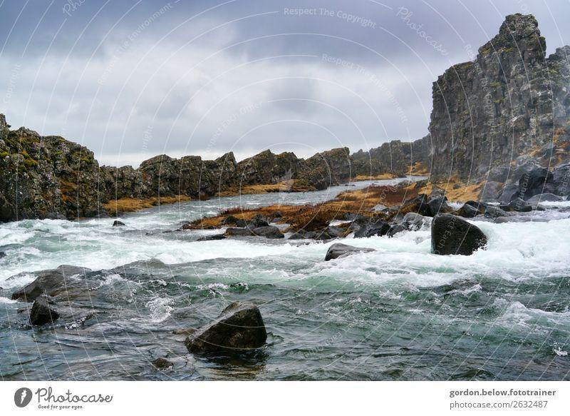 # wildes Island Freude Glück Ferien & Urlaub & Reisen Ausflug Abenteuer Ferne Freiheit Natur Landschaft Erde Sand Wasser Himmel Wolken Schönes Wetter Fluss