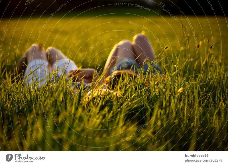 to relax Mensch Frau Kind Natur Jugendliche Sommer ruhig Erwachsene Wiese feminin sprechen Gras Denken träumen Freundschaft Zufriedenheit