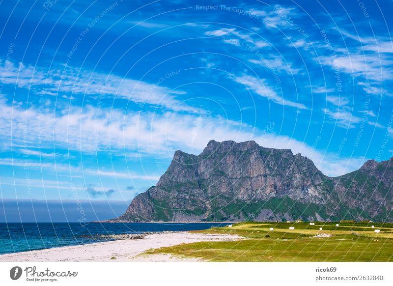 Utakleiv Beach auf den Lofoten in Norwegen Erholung Ferien & Urlaub & Reisen Tourismus Strand Meer Berge u. Gebirge Natur Landschaft Wasser Wolken Gras Wiese
