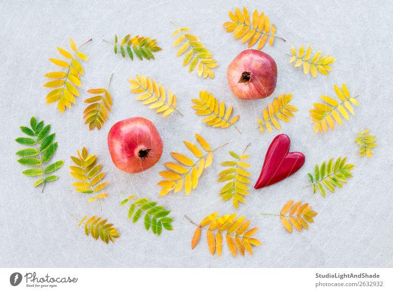 Granatäpfel und goldene Aschebaumblätter Frucht schön Kunst Natur Herbst Wetter Baum Blatt Beton Herz Liebe hell natürlich gelb grau grün rot Gefühle Farbe