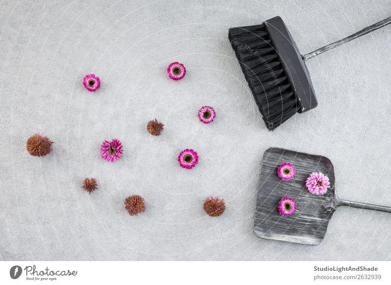 Kehrschaufel, Bürste und rosa Blumen auf Betonboden Sommer Garten Gartenarbeit Werkzeug Natur Landschaft Herbst Terrasse Metall alt natürlich rot schwarz Farbe