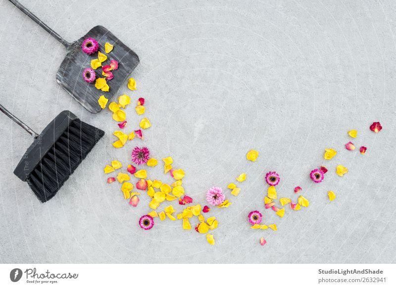 Trockenblumen und Rosenblätter auf der Gartenterrasse wegfegen schön Sommer Gartenarbeit Werkzeug Natur Landschaft Herbst Blume Terrasse Beton Metall alt