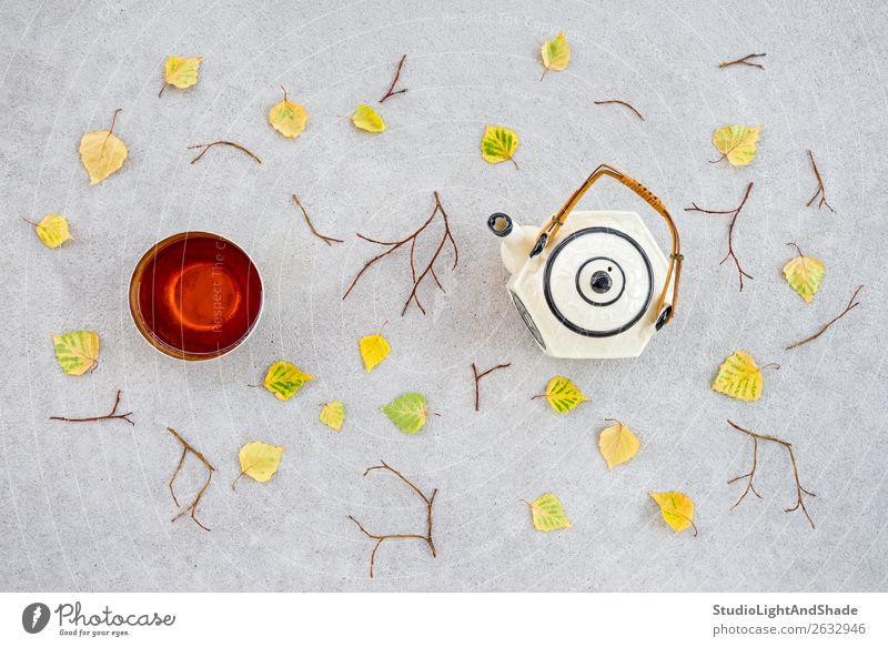 Warmer Tee an einem kühlen Herbsttag trinken schön Garten Natur Wetter Wärme Blatt Terrasse Beton natürlich gelb grün Farbe fallen gefallen Teetrinken Teekanne