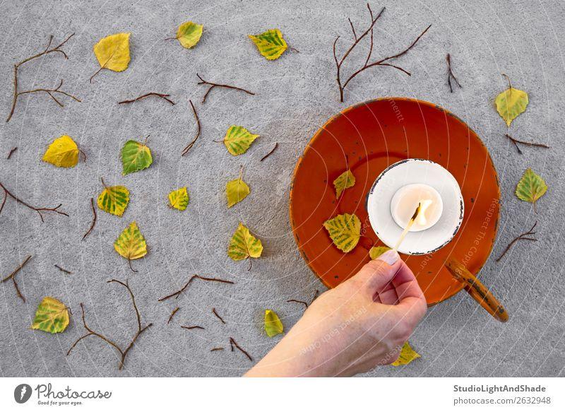 Eine Kerze anzünden für eine gemütliche Herbststimmung schön Garten Mensch Junge Frau Jugendliche Erwachsene Hand Finger 1 18-30 Jahre 30-45 Jahre Natur Wetter