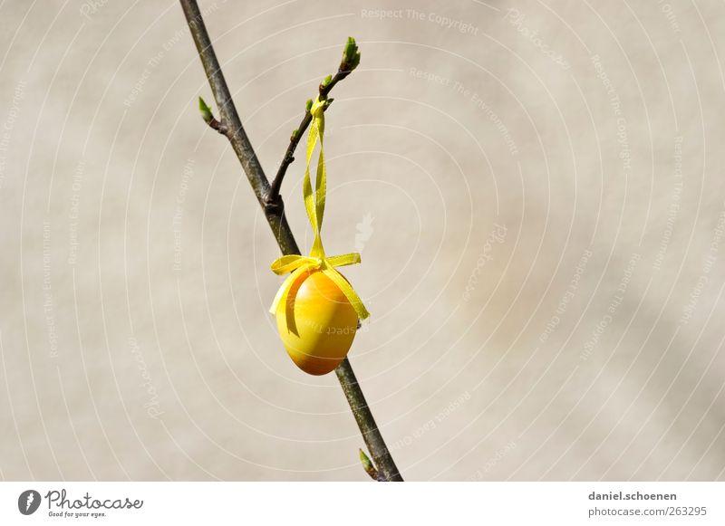 Osterei mit viel Textfreiraum gelb grau Frühling Dekoration & Verzierung Ast Ostern Ei
