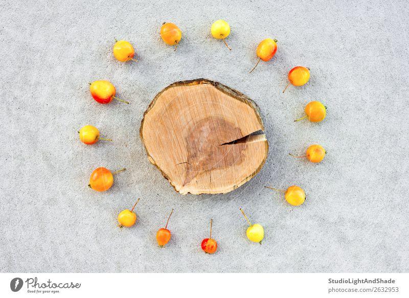 Apfelbaumstumpf mit Kopierraum umgeben von Kirschäpfeln Frucht Sommer Garten Gartenarbeit Natur Herbst Baum Beton Holz hell klein natürlich wild gelb grau rot