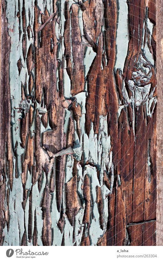 structure 3.3 alt blau Holz Linie braun kaputt Vergänglichkeit Verfall türkis Zerstörung lackiert