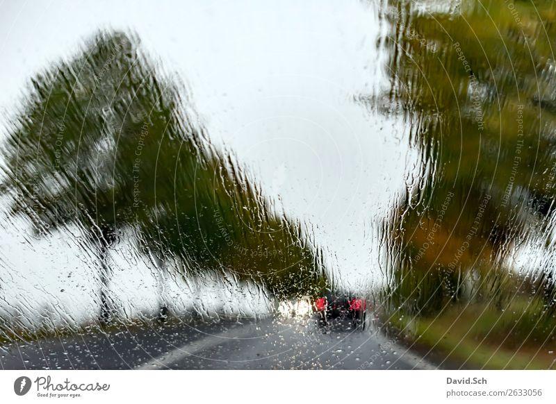 Landstraße im Herbst bei Regen Landschaft Wasser Wassertropfen schlechtes Wetter Baum Allee Verkehr Autofahren Straße PKW braun grün schwarz gefährlich