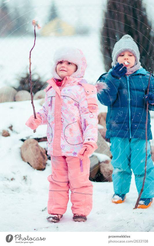 Kinder genießen Marshmallows, die am Lagerfeuer zubereitet werden. Lebensmittel Dessert Süßwaren Lifestyle Freude Glück Winter Schnee Winterurlaub Mensch