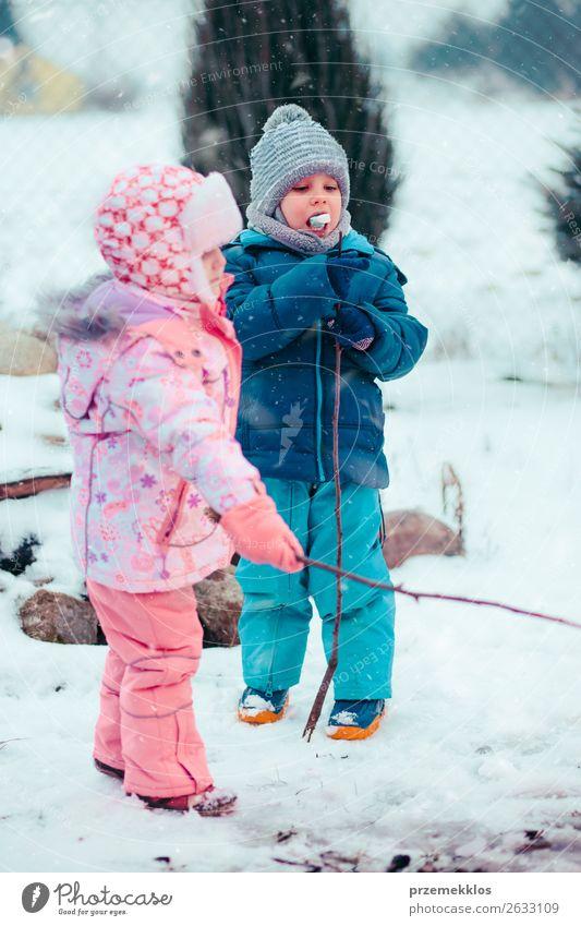 Kinder genießen Marshmallows, die am Lagerfeuer zubereitet werden. Lifestyle Freude Glück Winter Schnee Winterurlaub Mensch Mädchen Junge Geschwister Bruder