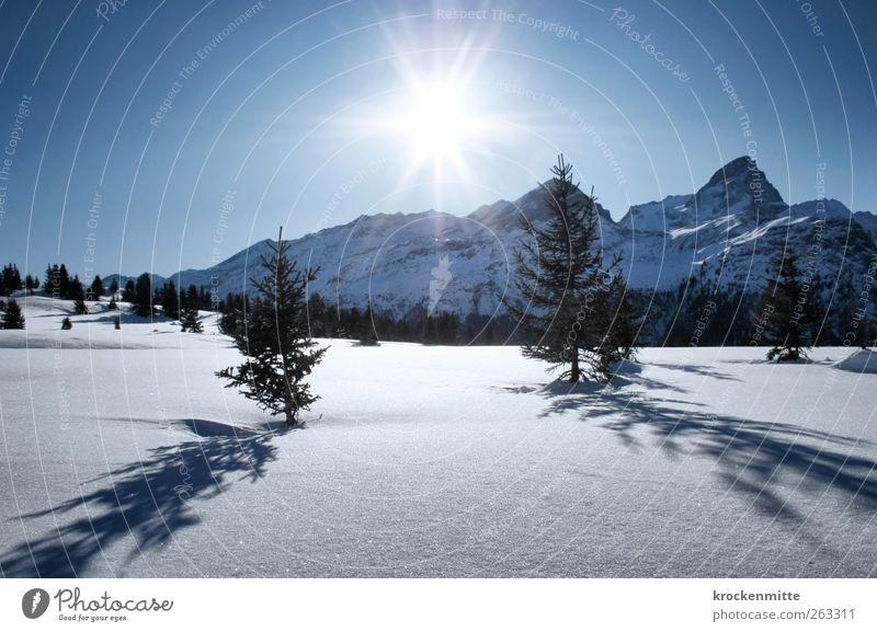 Ein Tag im Schnee Himmel Natur blau Baum Pflanze Sonne Winter Umwelt Landschaft Berge u. Gebirge leuchten Alpen Schönes Wetter Gipfel Schweiz
