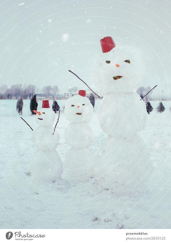 Drei Schneemänner stehen im Garten. Lifestyle Freude Winter Schneefall frieren genießen machen niedlich weiß kalt Hinterhof Genuss Jahreszeiten Schneemann