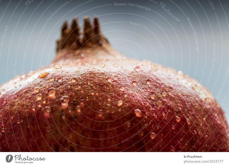 Granatapfel Detail Lebensmittel Frucht Bioprodukte Vegetarische Ernährung Gesunde Ernährung frisch Gesundheit rot genießen fruchtig Wassertropfen exotisch Hülle