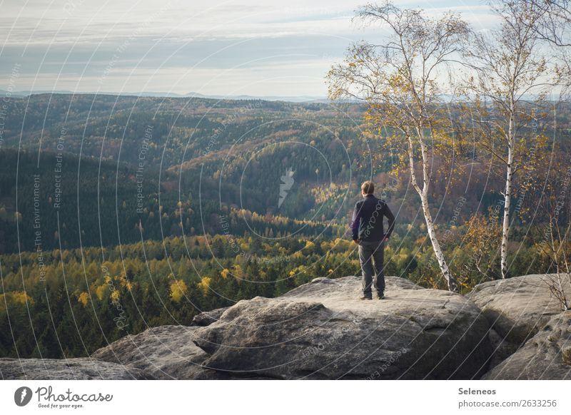 Weitblick Mensch Ferien & Urlaub & Reisen Natur Landschaft Erholung Ferne Berge u. Gebirge Herbst Umwelt natürlich Tourismus Deutschland Freiheit Felsen Ausflug
