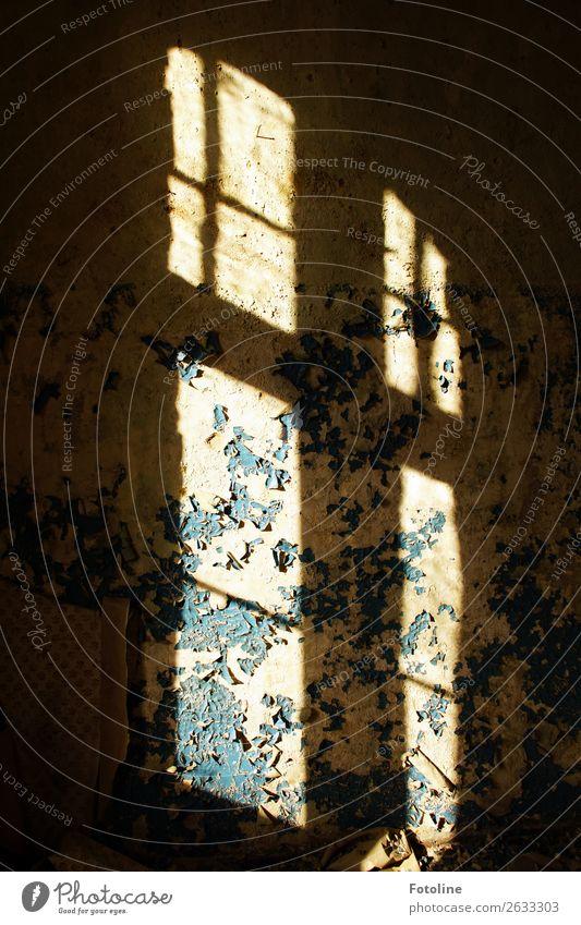 Lost Place Haus Mauer Wand Fenster alt dunkel hell retro lost places Putz abblättern Verfall verfallen Altbau Farbfoto Gedeckte Farben mehrfarbig Innenaufnahme