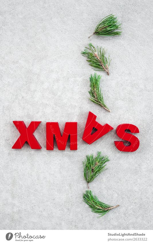 Auf den Kopf gestellte Weihnachten Freude Winter Dekoration & Verzierung Weihnachten & Advent Natur Pflanze Baum Beton Ornament einfach lustig natürlich grau