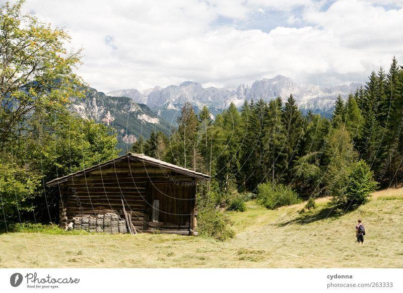 Auf Wanderschaft Mensch Natur Ferien & Urlaub & Reisen Sommer Einsamkeit ruhig Wald Ferne Erholung Umwelt Landschaft Leben Wiese Berge u. Gebirge Freiheit