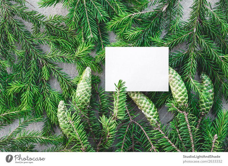 Leere weiße Karte und grüne Tannenzweige Winter Dekoration & Verzierung Weihnachten & Advent Natur Pflanze Baum Wald Papier natürlich grau Farbe Weihnachtsbaum