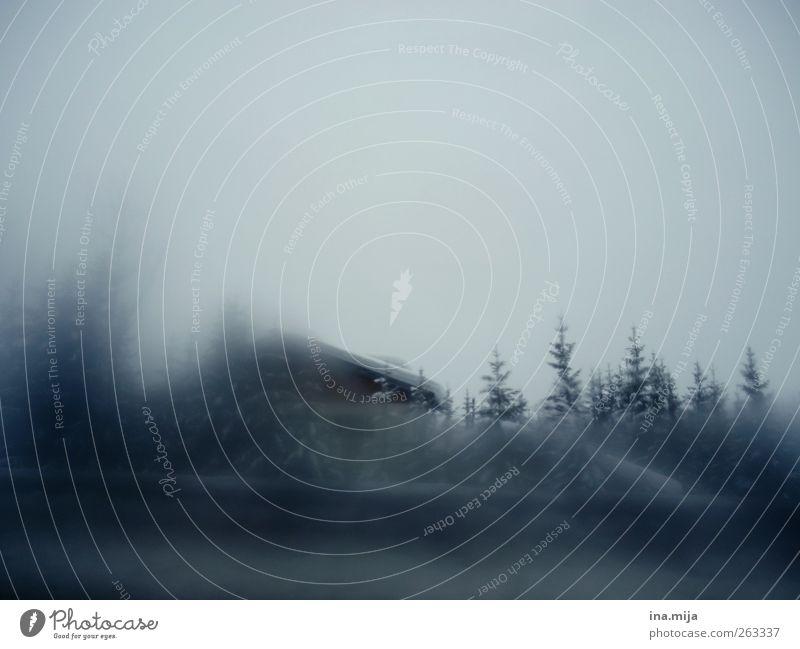 Bauernhaus im Winter_Alpen Umwelt Natur Landschaft Wolkenloser Himmel Wetter schlechtes Wetter Unwetter Sturm Nebel Eis Frost Schnee Baum Wald Berge u. Gebirge