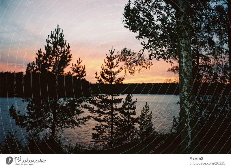 Sonnenuntergang See Wald Wasser Himmel