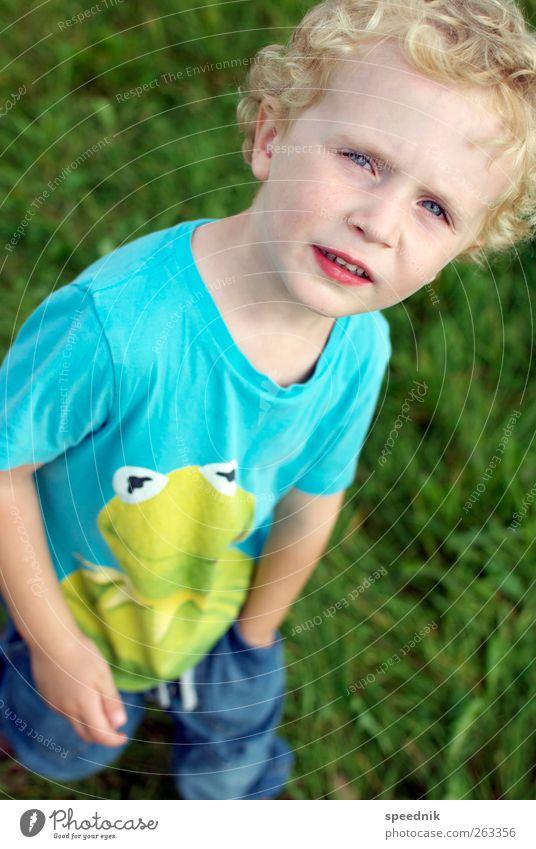 Der Froschkönig Mensch Kind blau grün schön Sommer Tier Junge Wärme Kindheit blond wandern maskulin Ausflug Wachstum beobachten