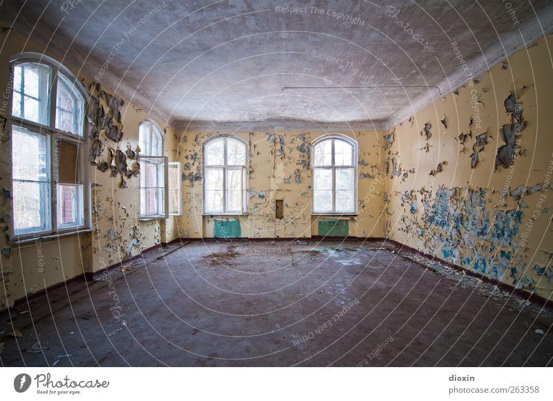 Freiraum alt Stadt Farbe Haus Fenster Wand Architektur Mauer Gebäude Raum authentisch Häusliches Leben kaputt Vergänglichkeit Bauwerk verfallen