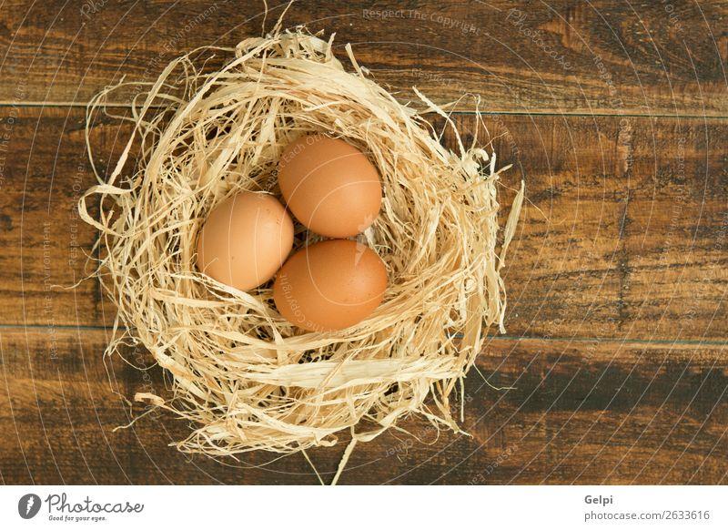 weiß Tier Lebensmittel Holz gelb natürlich Menschengruppe Vogel braun frisch Tisch Küche Ostern Bauernhof Frühstück