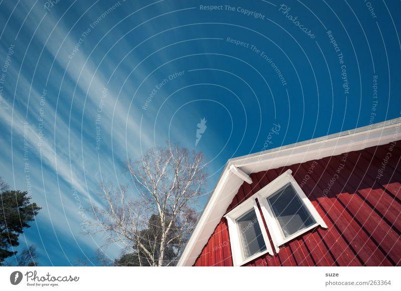 Fliehendes Dach Ferien & Urlaub & Reisen Häusliches Leben Wohnung Haus Umwelt Himmel Klima Schönes Wetter Baum Hütte Fassade Fenster Holz authentisch nachhaltig