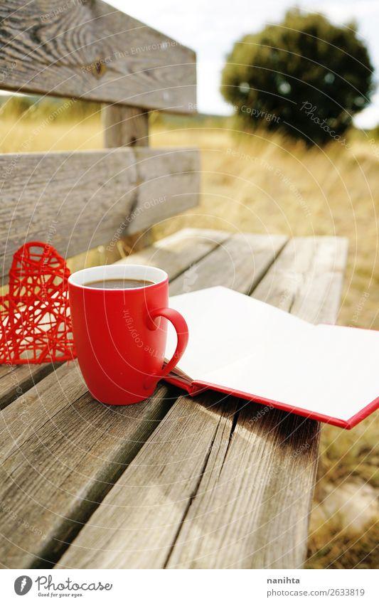 Roter Becher mit Kaffee auf einer Holzbank Frühstück Getränk Heißgetränk Tee Tasse Winter Kultur Buch Herbst Wärme Herz lecker rot Gelassenheit klug sonnig