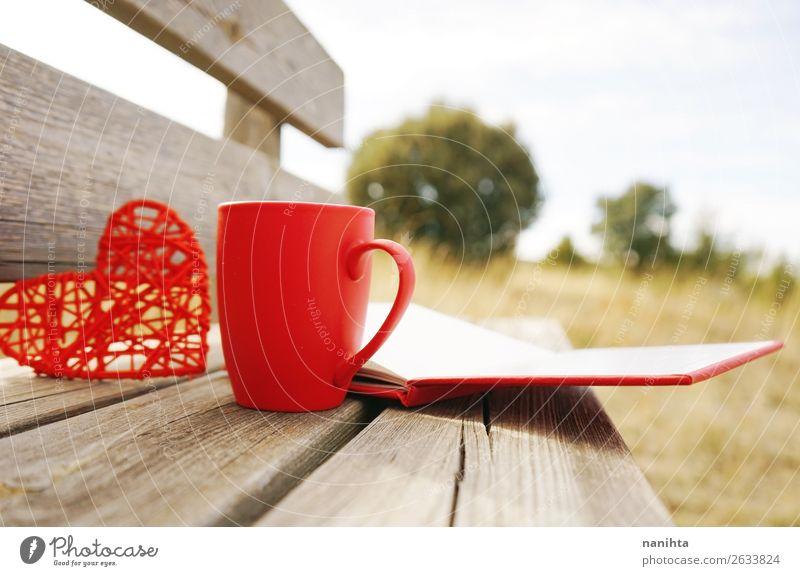 Rote Tasse mit Kaffee auf einer Holzbank im Freien am Morgen. Frühstück Heißgetränk Tee Winter Buch Herbst Wärme Herz lecker rot Becher sonnig fallen rustikal