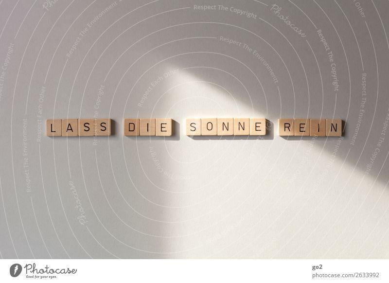 Lass die Sonne rein Spielen Brettspiel Ferien & Urlaub & Reisen Sommer Sommerurlaub Holz Schriftzeichen Gefühle Glück Lebensfreude Vorfreude Optimismus