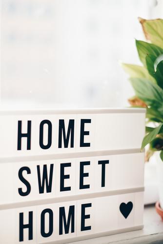 """Lightbox with the words """"home sweet home"""" Pflanze Haus Häusliches Leben Wohnung Dekoration & Verzierung Schriftzeichen Herz Buchstaben Kasten gemütlich"""