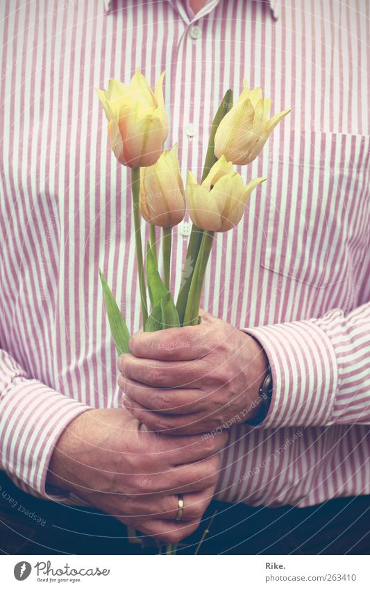 Vielen Dank... Mensch Mann Hand schön Pflanze Blume Erwachsene Blüte maskulin Geschenk Romantik festhalten Freundlichkeit 45-60 Jahre Blühend Hemd