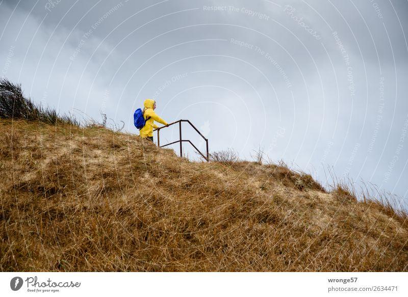 Festhalten Frau Mensch Ferien & Urlaub & Reisen blau Erwachsene Herbst gelb feminin Küste braun grau Regen wandern 45-60 Jahre Wind festhalten