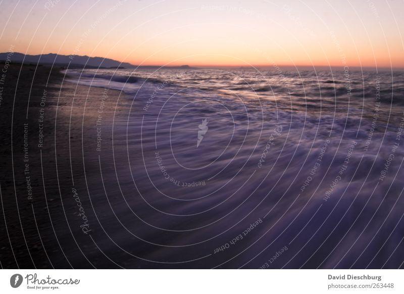 Abend am Meer II Ferien & Urlaub & Reisen Sommer Sommerurlaub Strand Insel Wellen Landschaft Wasser Wolkenloser Himmel Horizont Schönes Wetter Küste gelb